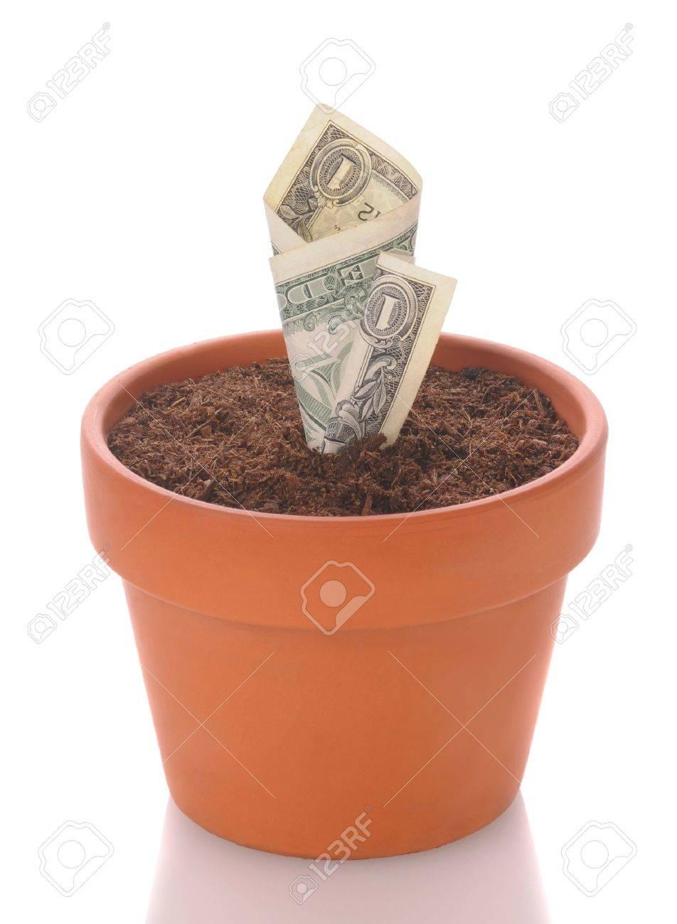 Dollar Bill In A Flower Pot Bill Looks Like It Is A Seeding – Format for a Bill