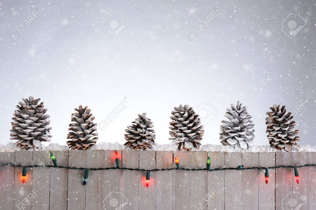 Weihnachtsbeleuchtung Tannenzapfen.A Rustic Wood Fence With Pine Cones Lined Up On Top Christmas