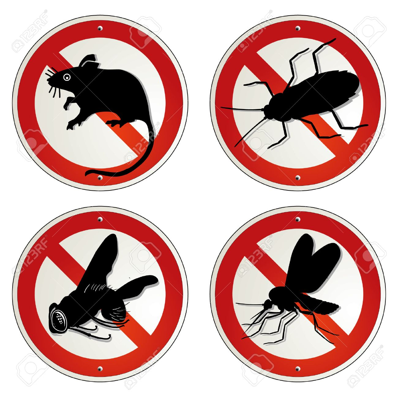 vermin bugs Stock Vector - 7989802