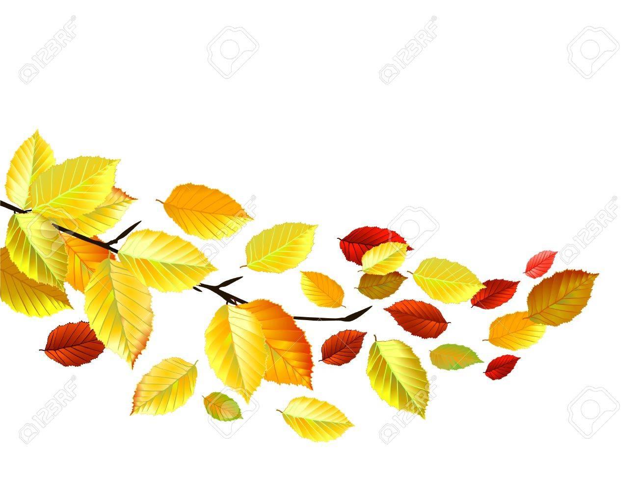 10 月の秋の紅葉のイラスト素材 ベクタ Image