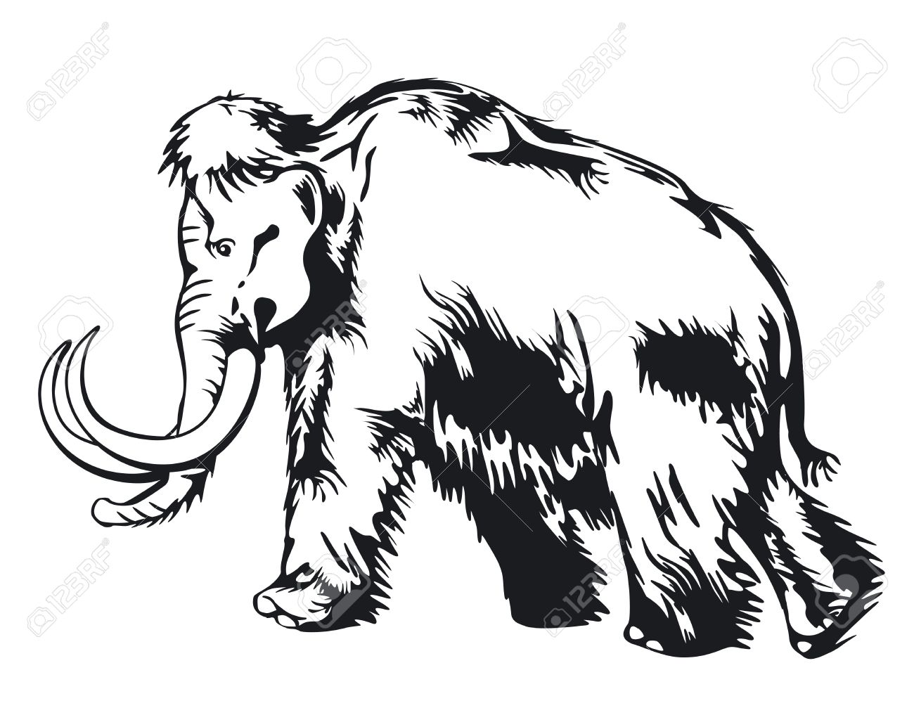 ancient mammoth images u0026 stock pictures royalty free ancient