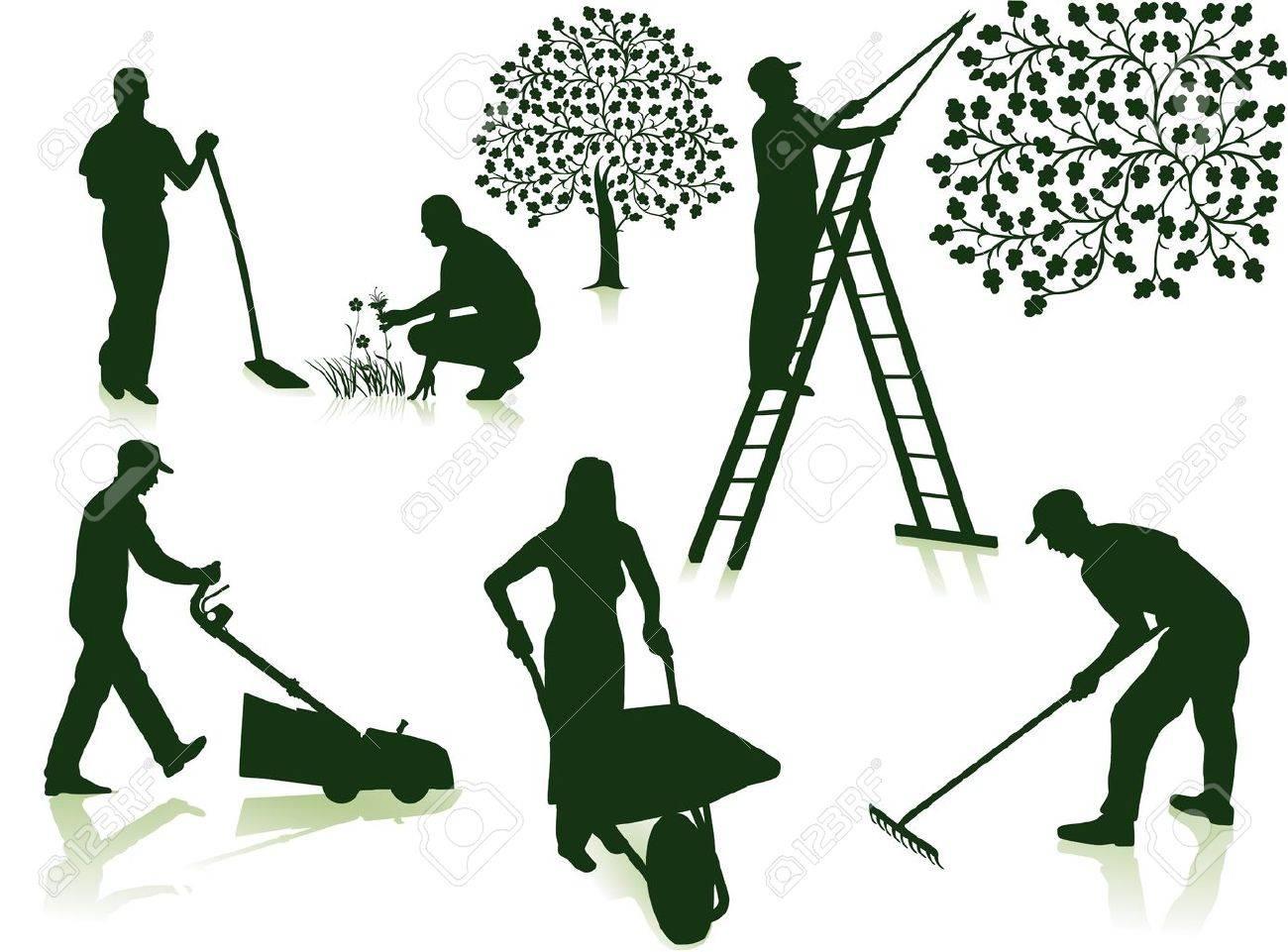 garden care - 12802253