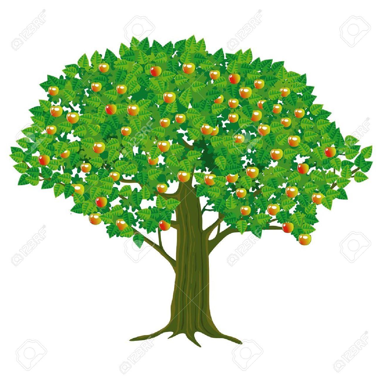Apple Trees Large Apple Tree