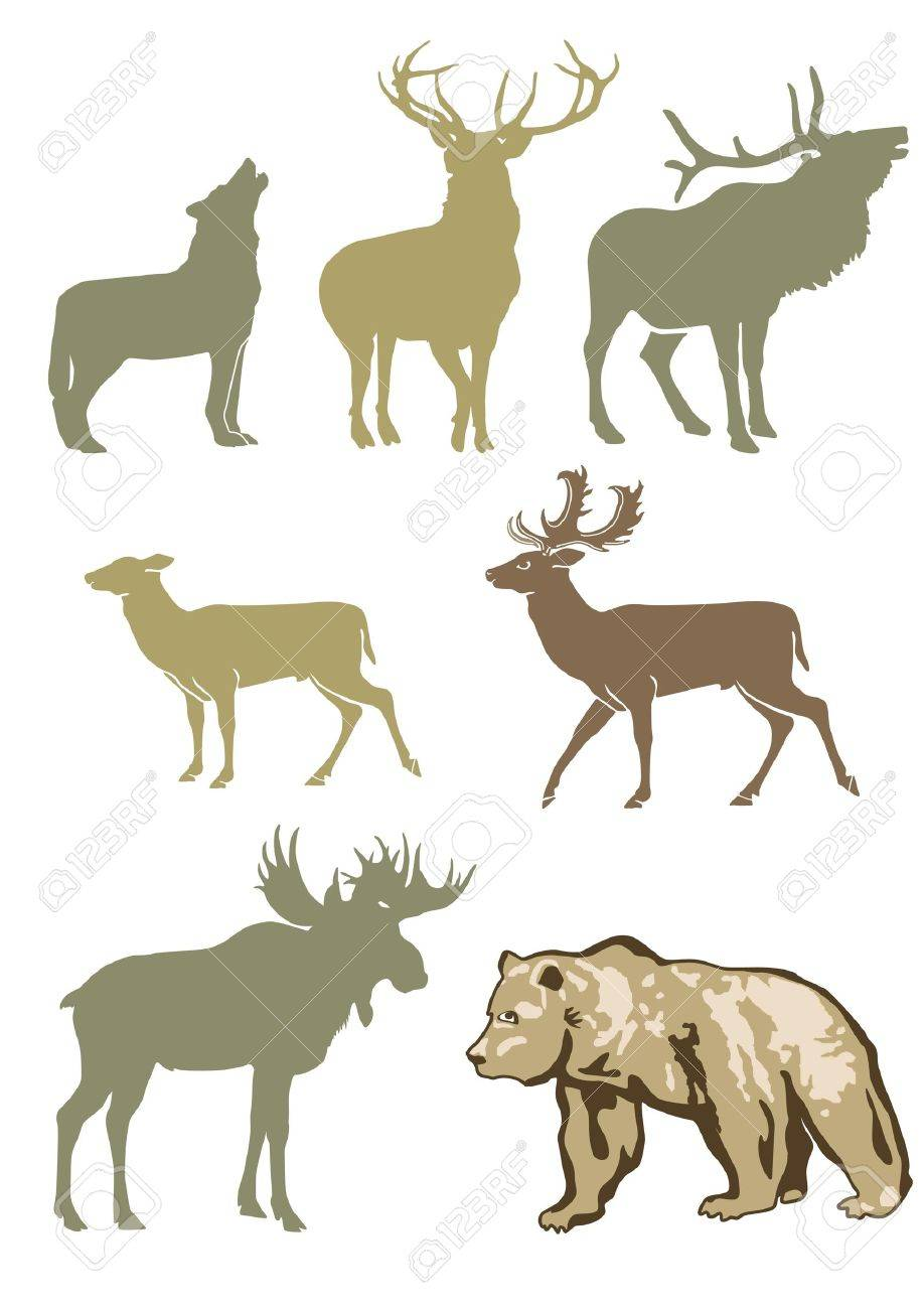 Forest Animals Stock Vector - 15092475