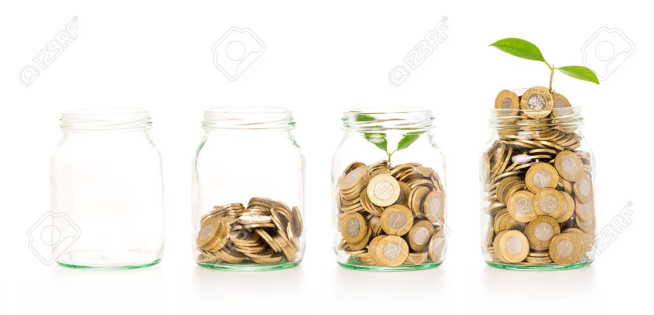 Money growing plant step with deposit coin in bank concept. Isolated in white. - 50912645