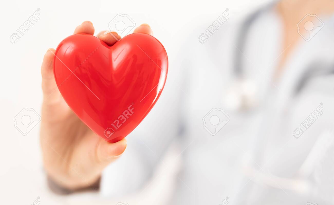 The doctor is holding and showing a red heart. Concept for topics: health, support, international or national cardiology day. - 132066158