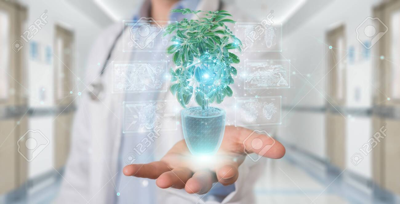Researcher on blurred background holding and touching holographic projection of a plant with digital analysis 3D rendering - 150452746