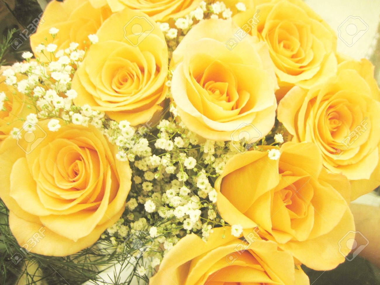 Beautiful Bouquet Of Yellow Roses With Baby Breath Stock Photo