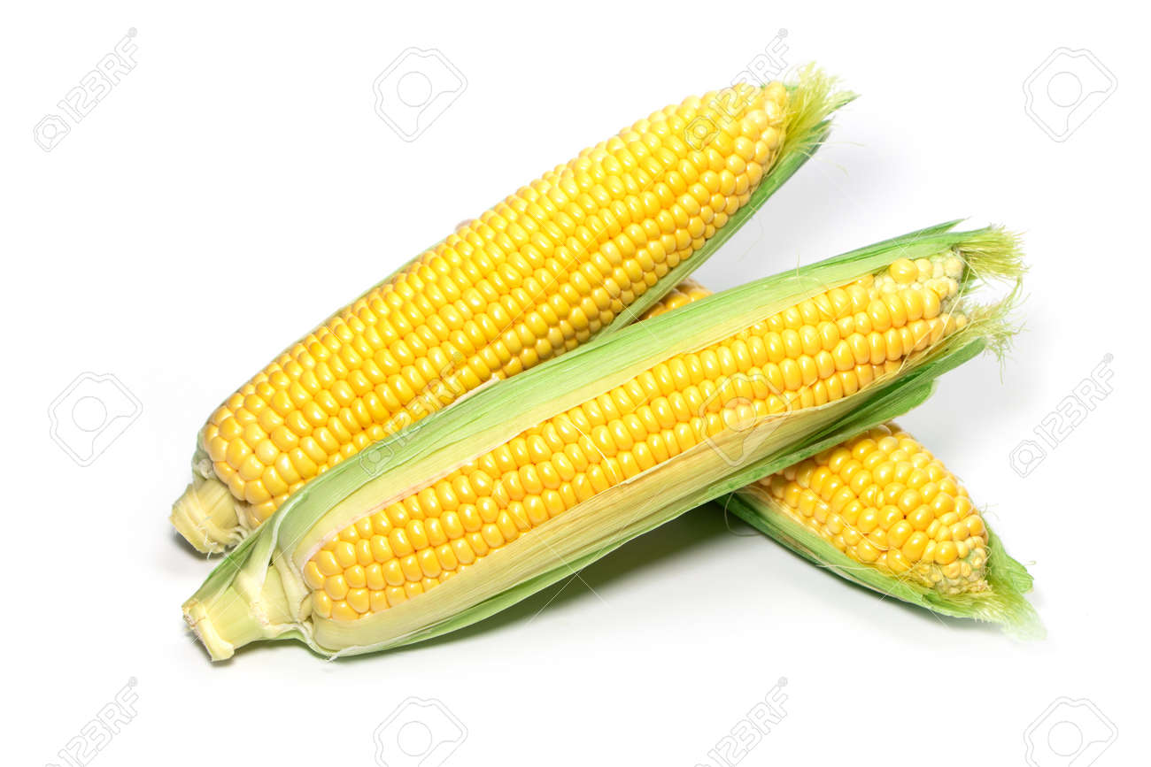 Fresh corn ears with leaves set isolated on white background. - 167031464