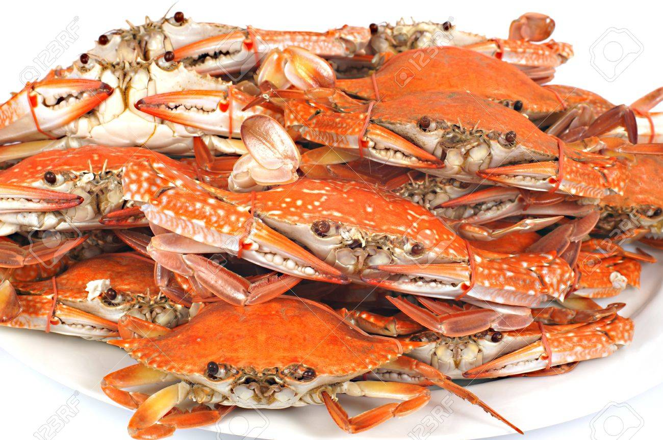 Steamed Blue Crab Stock Photo, Picture And Royalty Free Image