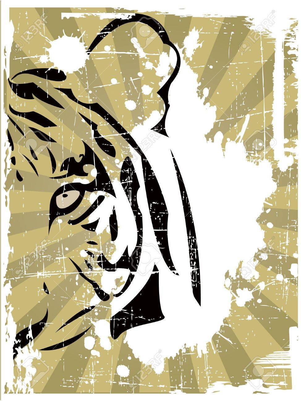 the  abstract tiger head Stock Vector - 6746004