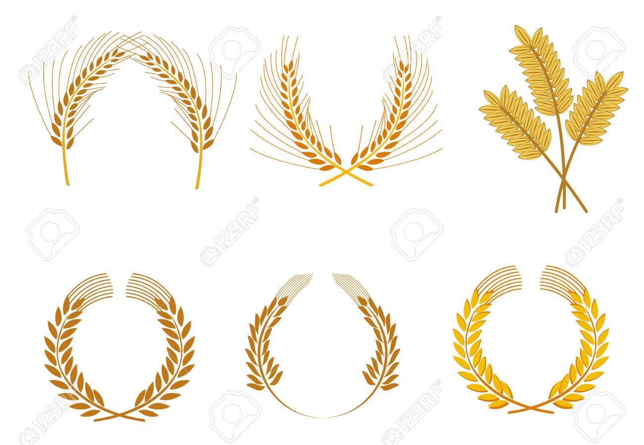 Set of cereal wreaths as an agriculture concept Stock Vector - 6009700