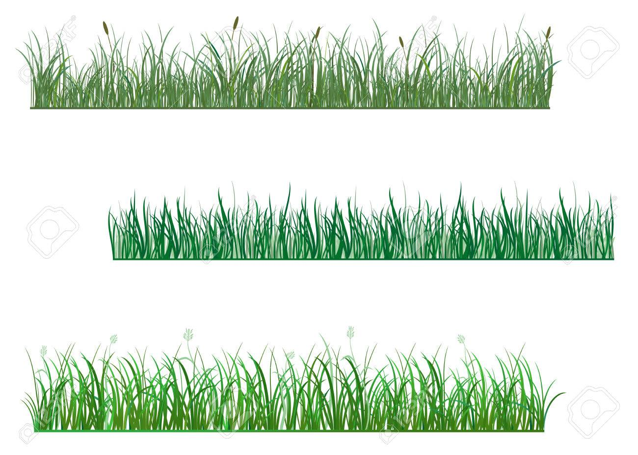Green grass elements for design and decorate Stock Vector - 6554184