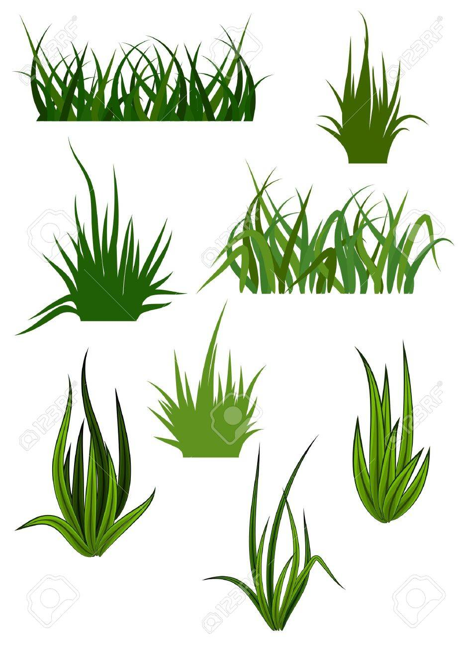 Green grass elements for design and decorate Stock Vector - 6554215