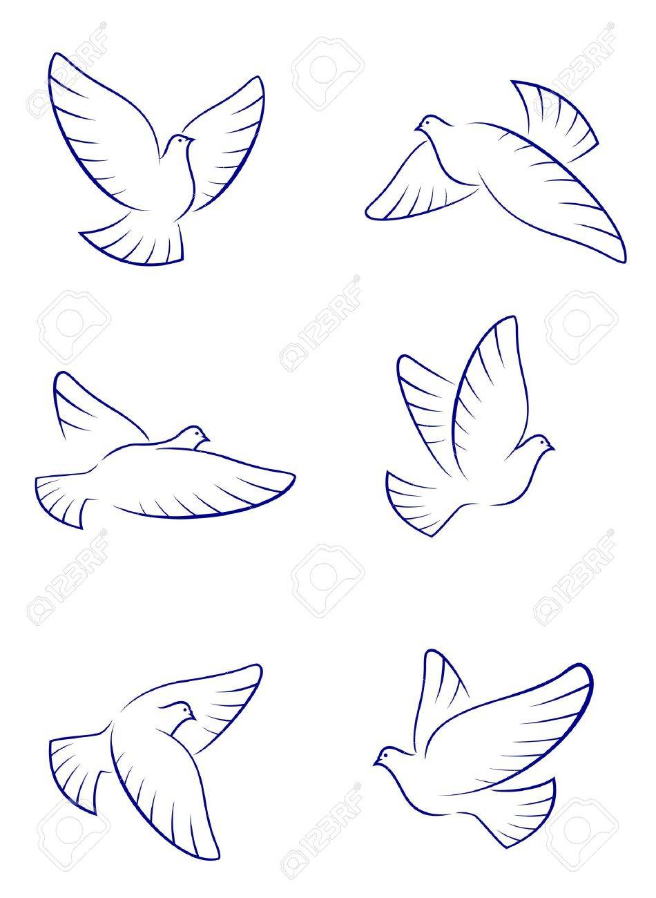 Set of white doves as a concept of love or peace Stock Vector - 7462490