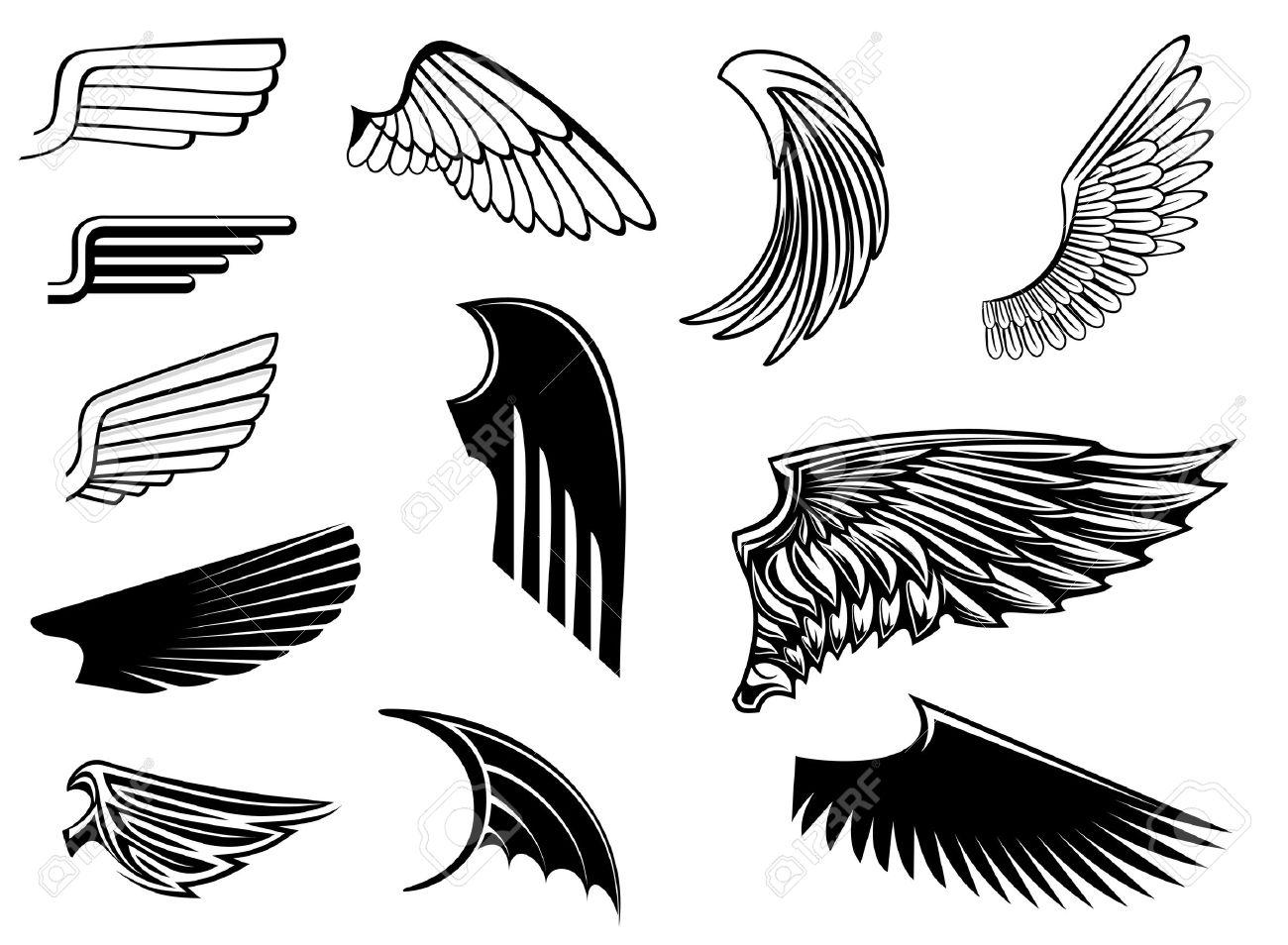 Set of bird wings for heraldry design Stock Vector - 11976450