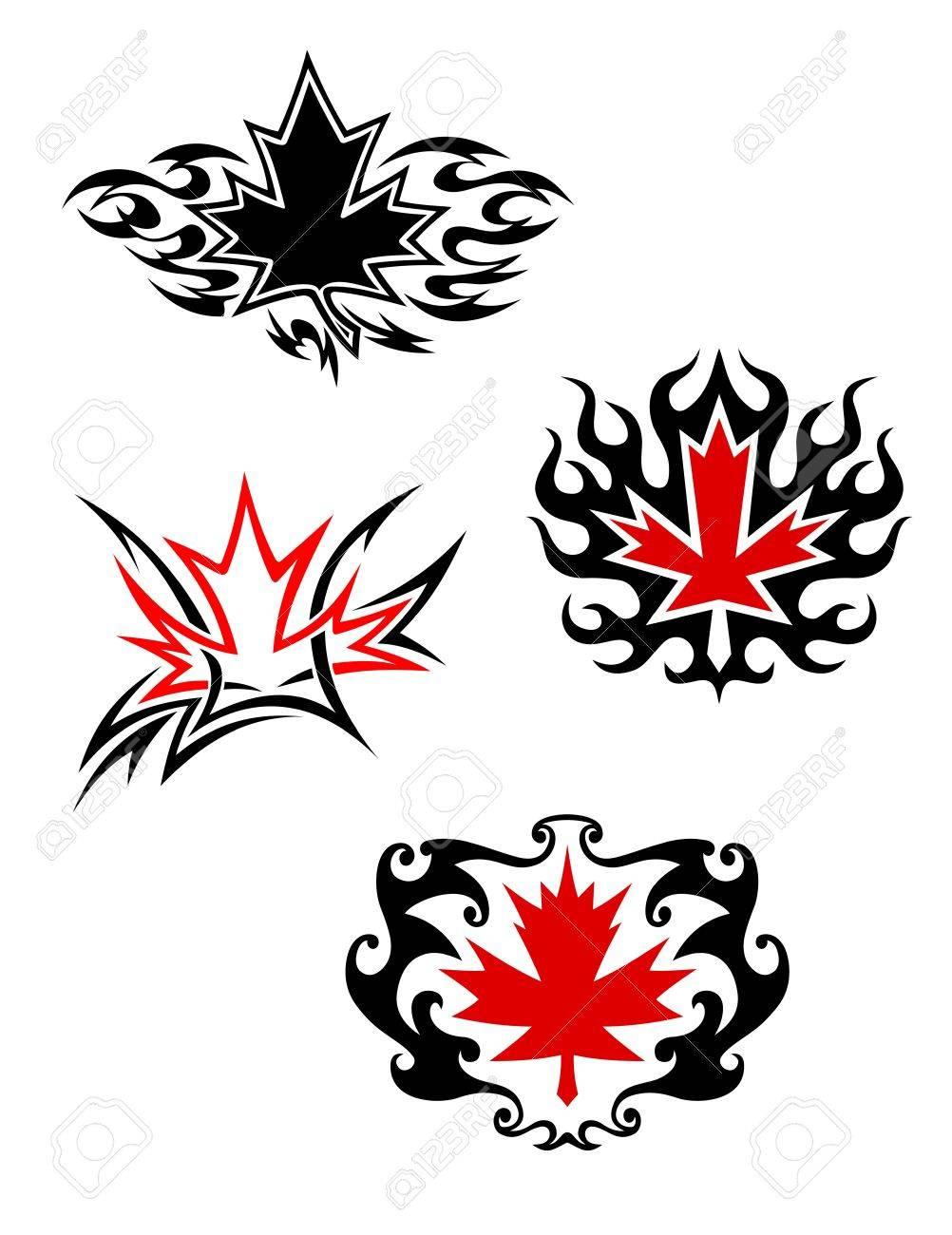 Maple Mascotas Hoja De Estilo Para El Diseño Del Tatuaje
