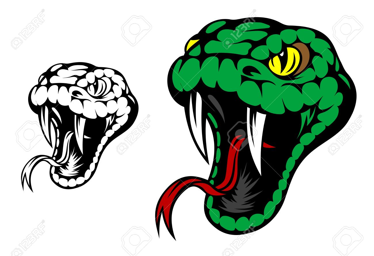 snake head images u0026 stock pictures royalty free snake head photos