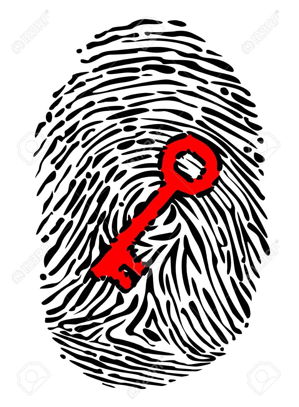 Fingerprint and key for security or identity system concept design Stock Vector - 18538841