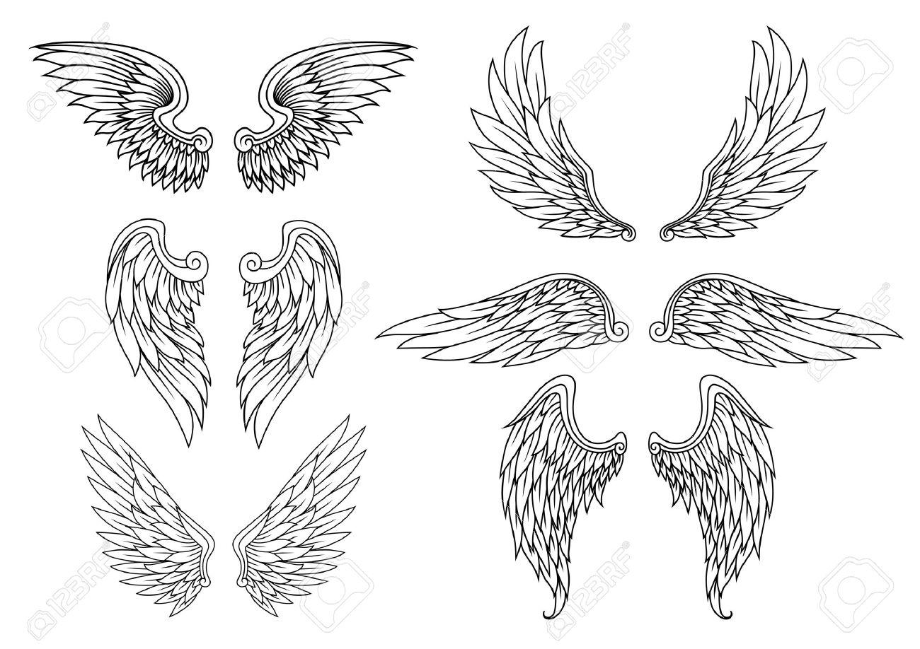 ailes héraldiques fixée pour la conception de tatouage ou de la