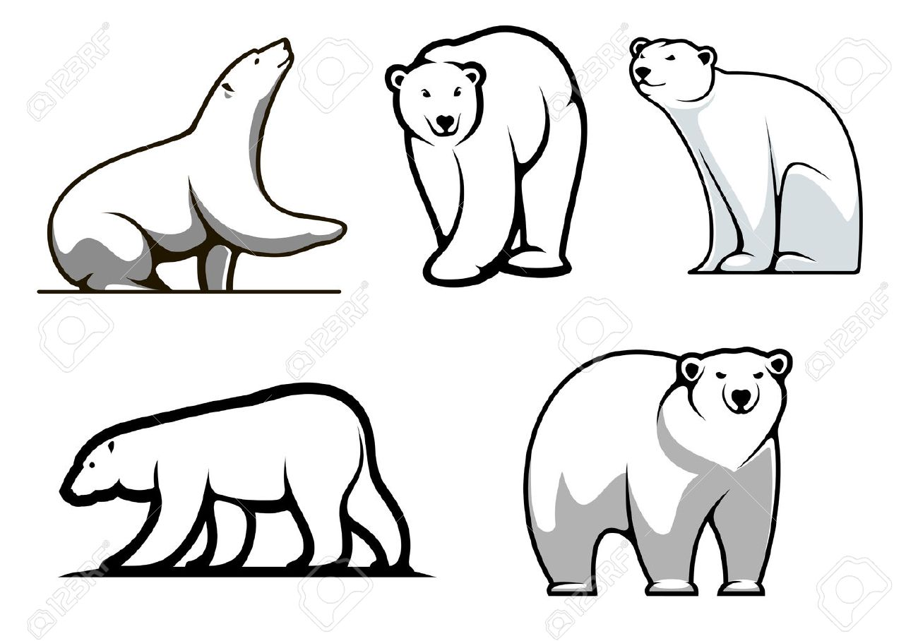white polar bears set in cartoon style for mascot royalty free