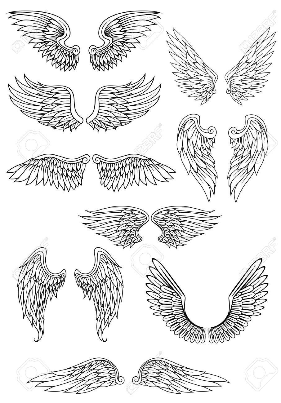 oiseaux héraldique ou des ailes d'ange set isolé sur blanc pour les