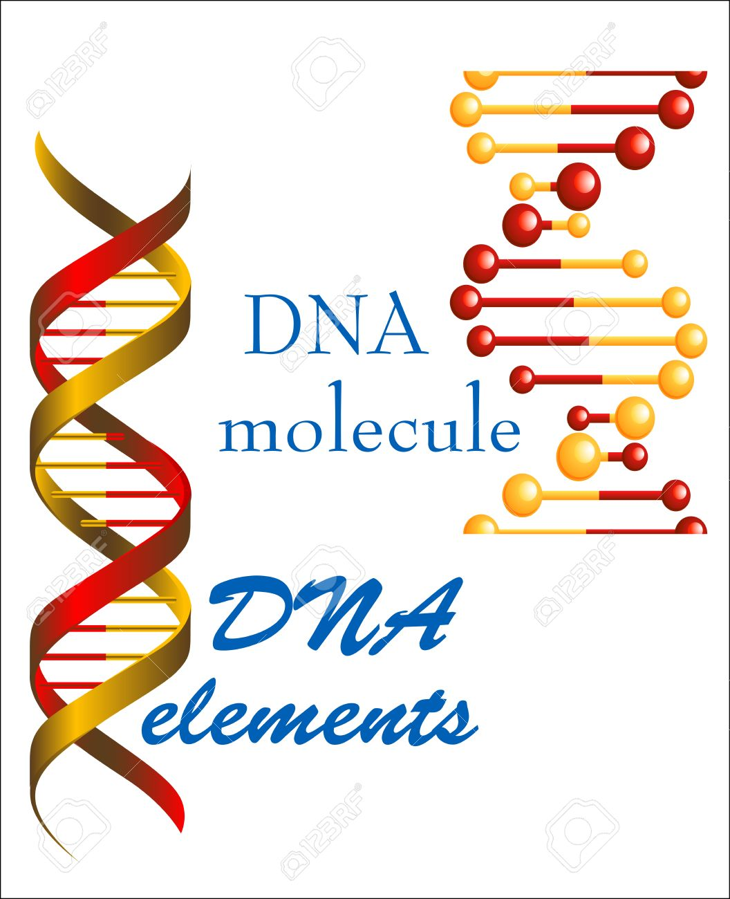 Dna Molecule And Elements Symbols For Medicine Genetics And