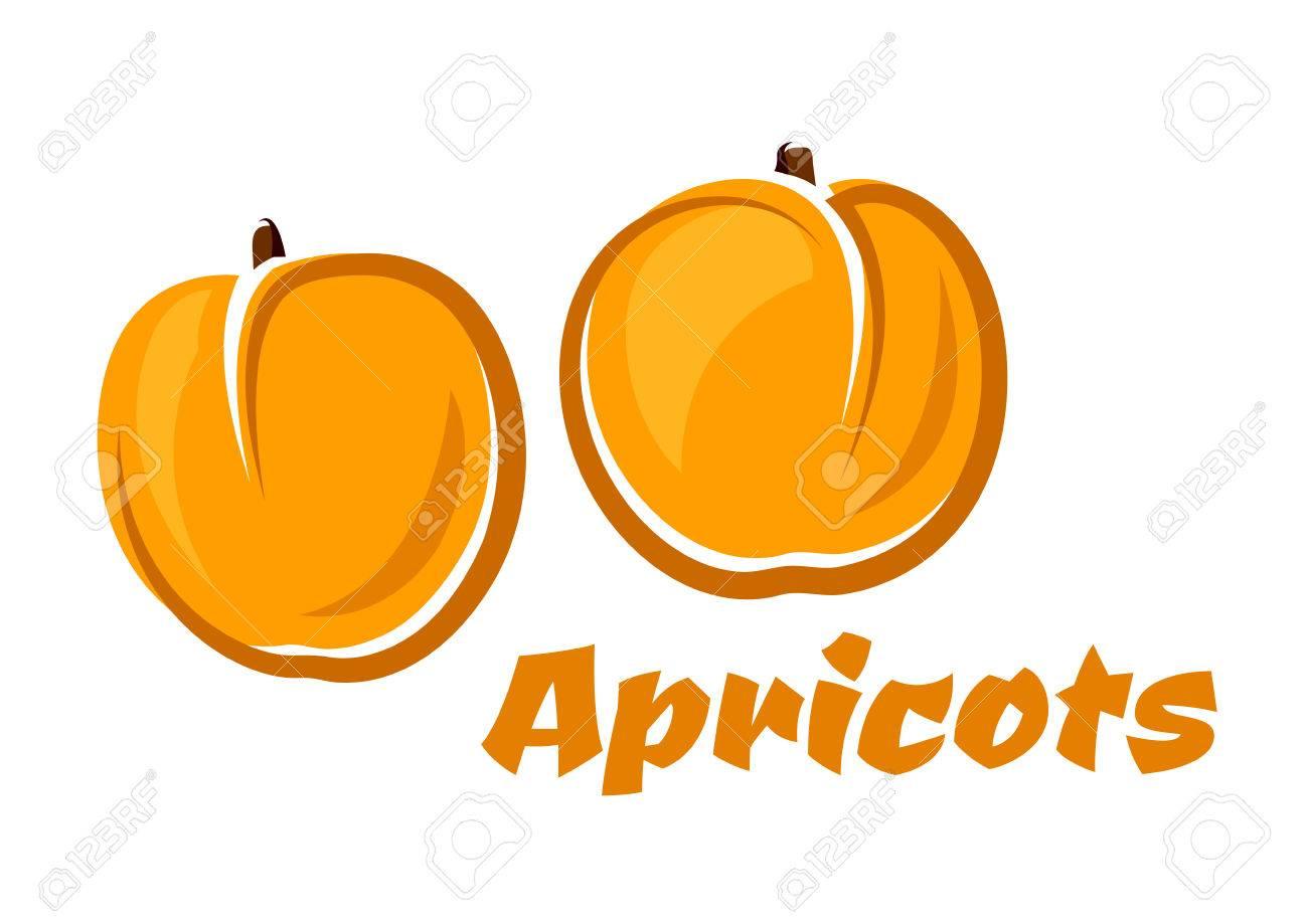 apricot fruits affiches représentant arôme fruits rouges juteuses en