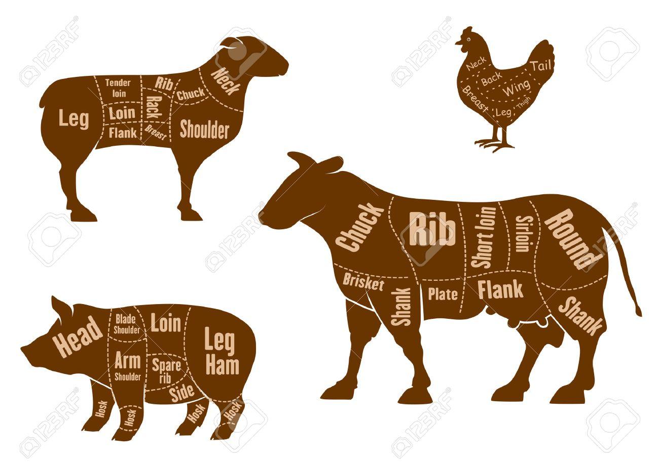 Pollo, Carne De Cerdo, Carne De Res Y Carne De Cordero Cortes ...