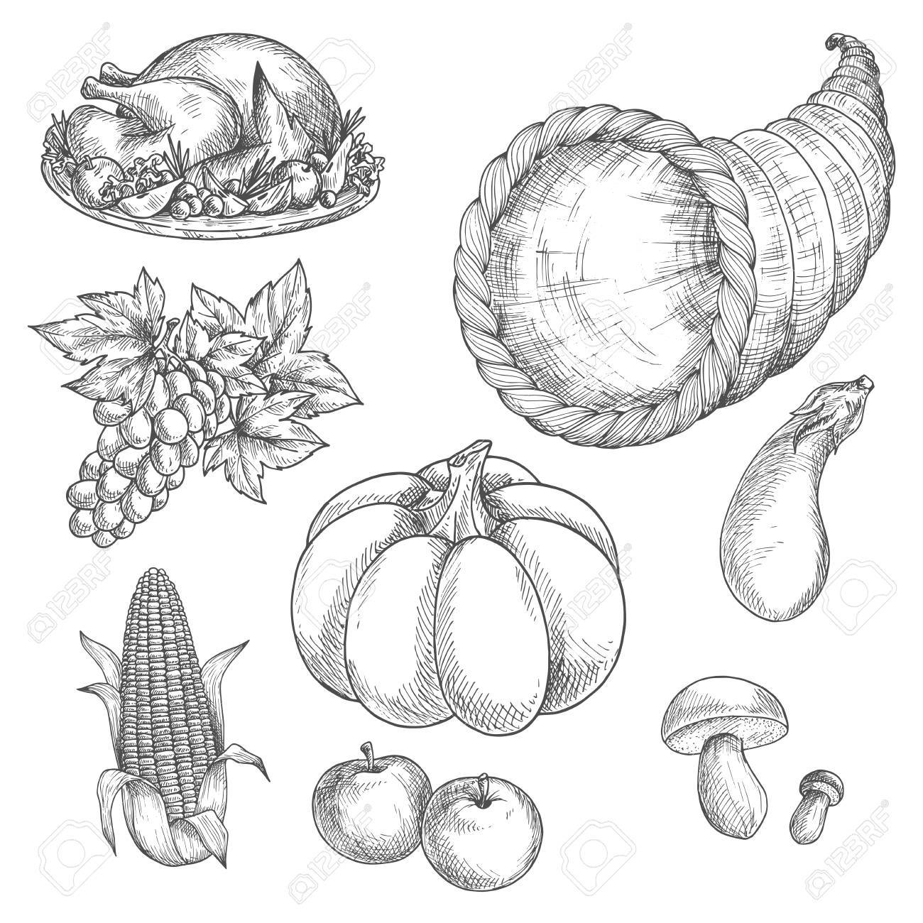 Thanksgiving-Tag-Symbole. Vektor-Skizze Gebratener Truthahn Gericht ...