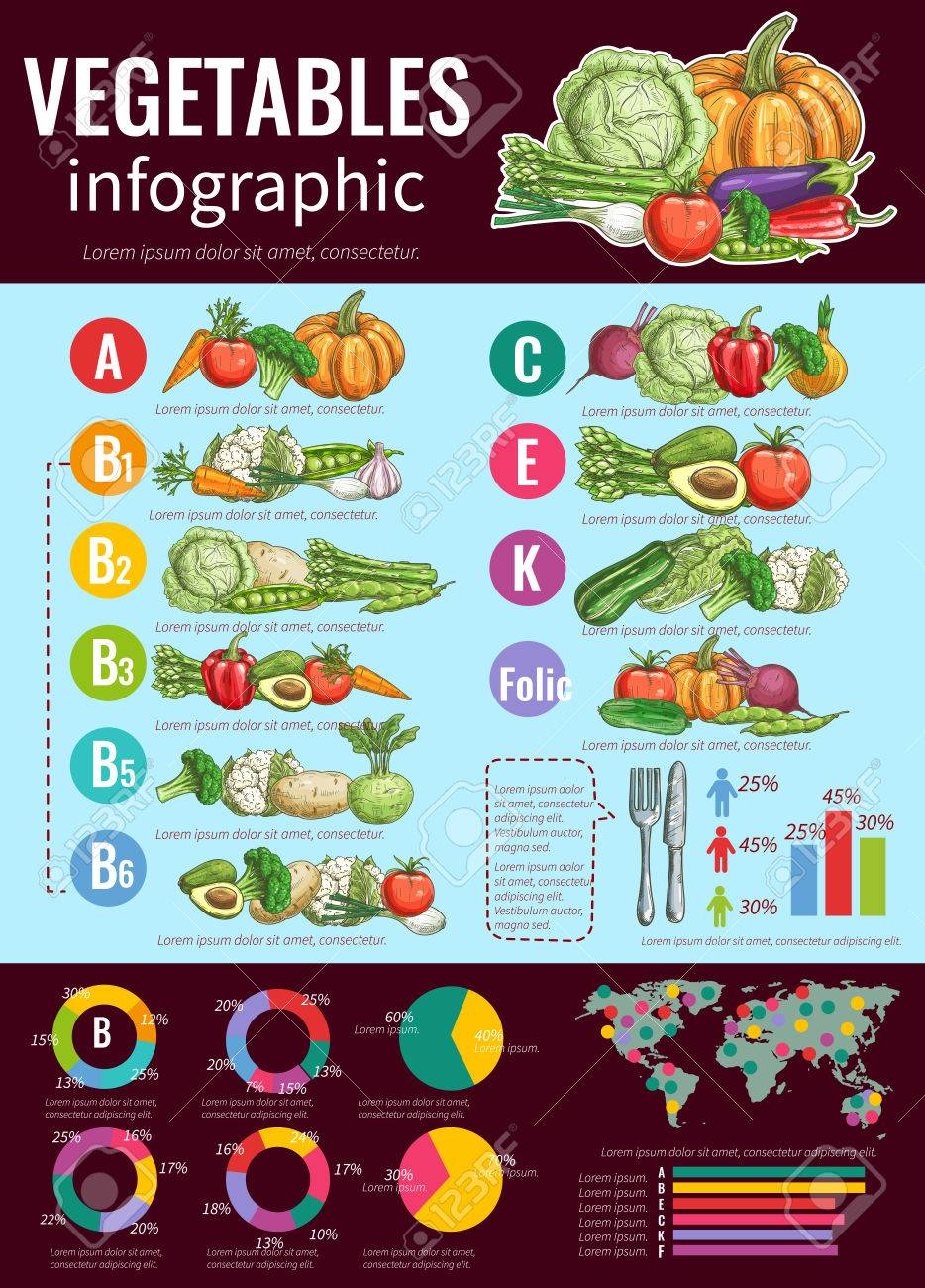 Healthy vegetables infographic design template with sketches of healthy vegetables infographic design template with sketches of fresh vegetables vitamin content and health benefits nvjuhfo Choice Image
