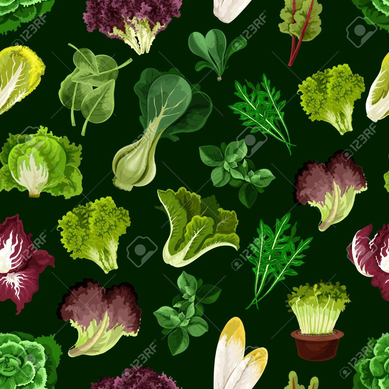 Leaf Vegetable Salad Greens And Potherb Seamless Pattern With Fresh Lettuce Spinach Cress