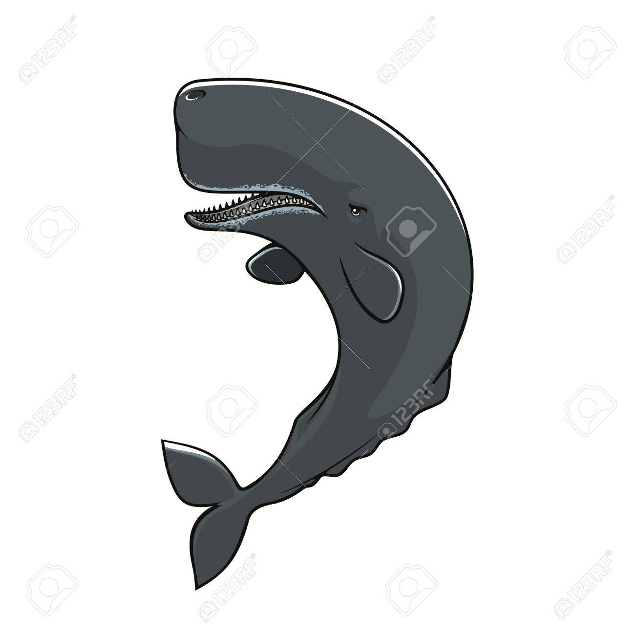 Cachalot Isolated Icon Vector Sperm Whale Mammal Fish Symbol