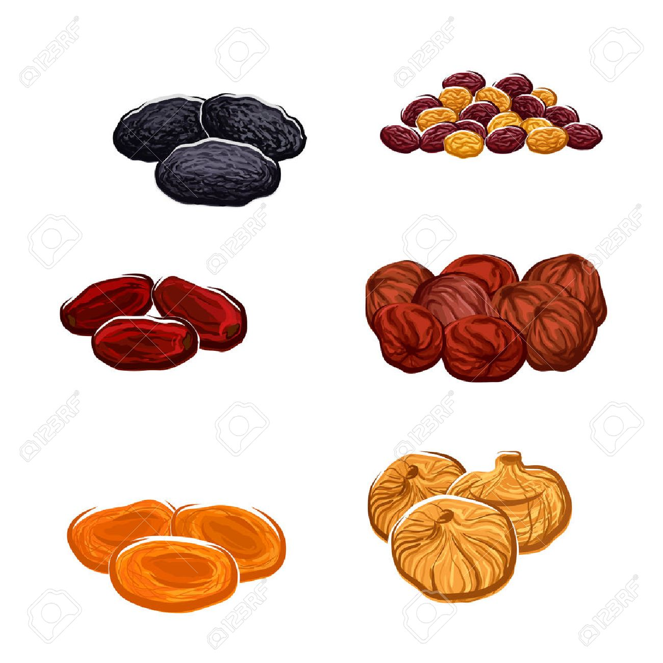 Vector icons of dried fruits. Isolated raisins of grape, dates and juicy exotic figs, apricots, plums and black prunes. Vegetarian or vegan raw food nutrition or sweets and dessert snacks or appetizers or culinary ingredients - 70977994