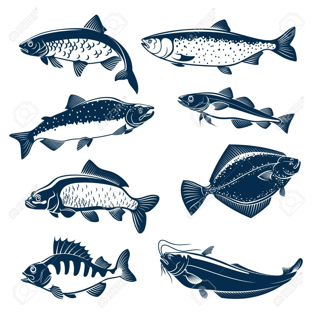 Fishes vector isolated icons. - 71567104