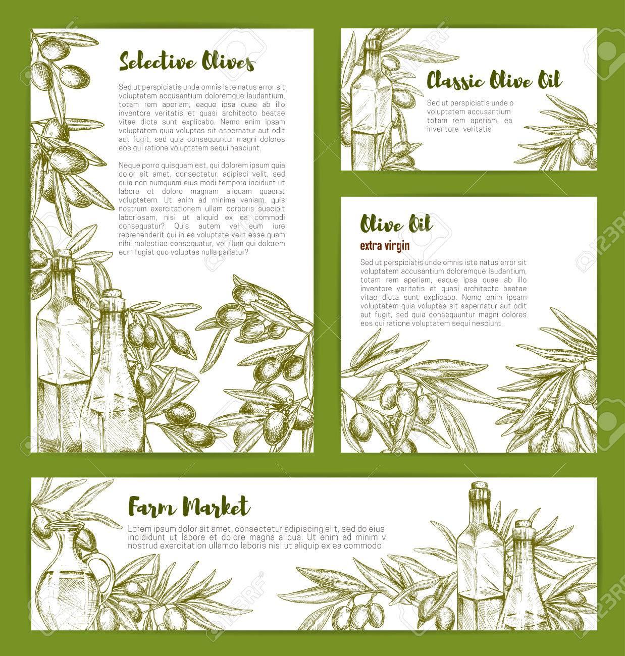 Plantillas de boceto de aceite de oliva para la nutrición del producto y  las recetas de cocina. Diseño de productos de oliva de la cocina italiana  con ...