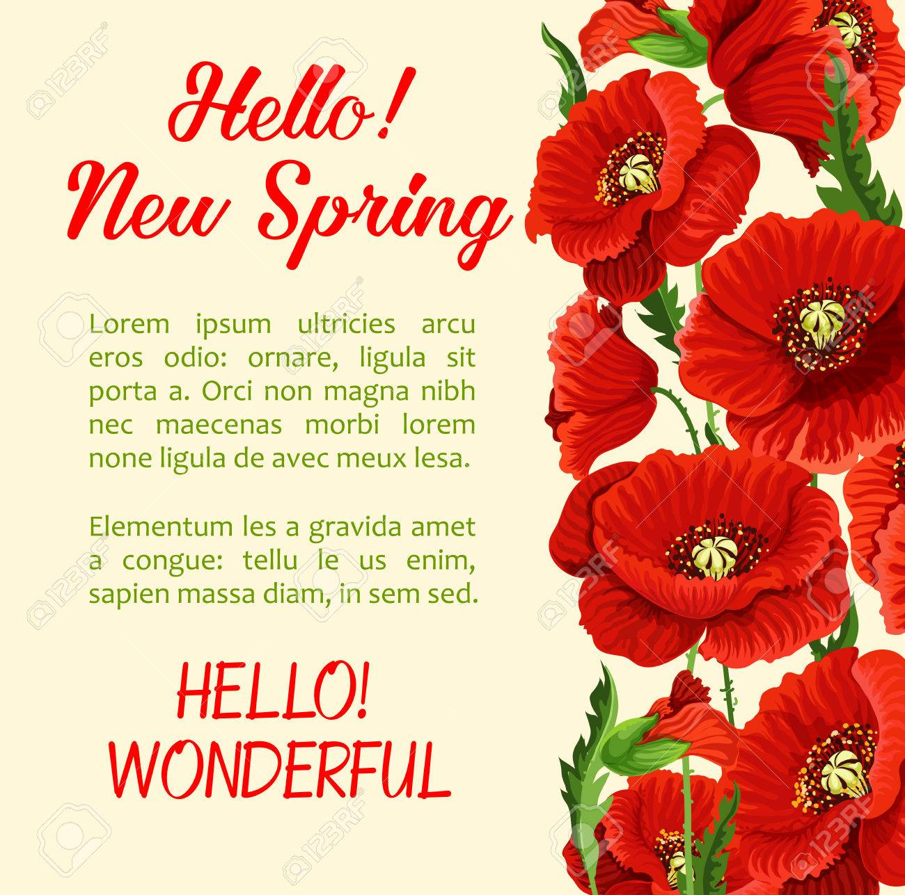 Vector   Vector Poster Of Poppy Flowers Hello Spring Quote