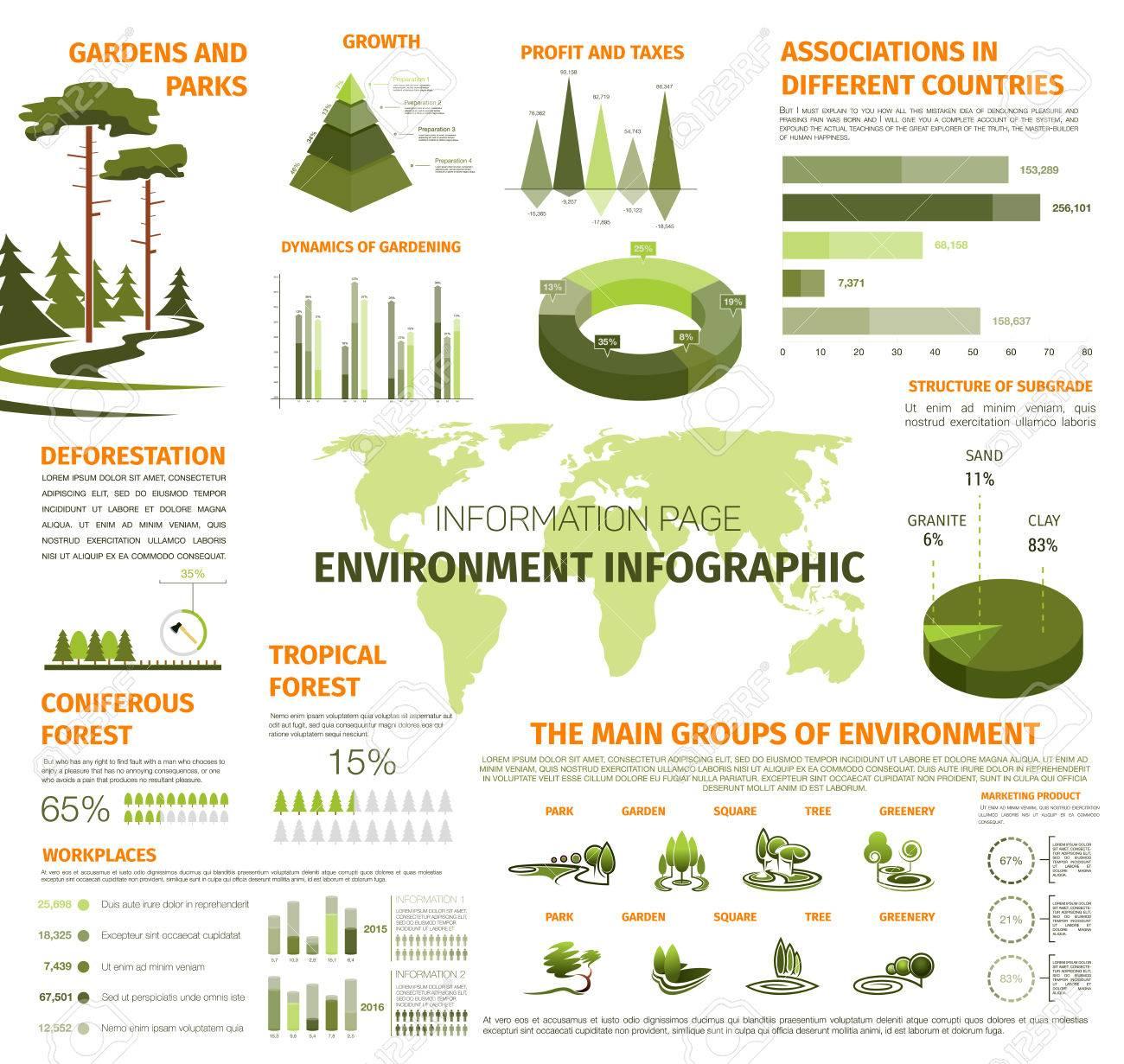 Plantilla De Infografía De Ambiente Y Ecología. Elementos De Diseño ...