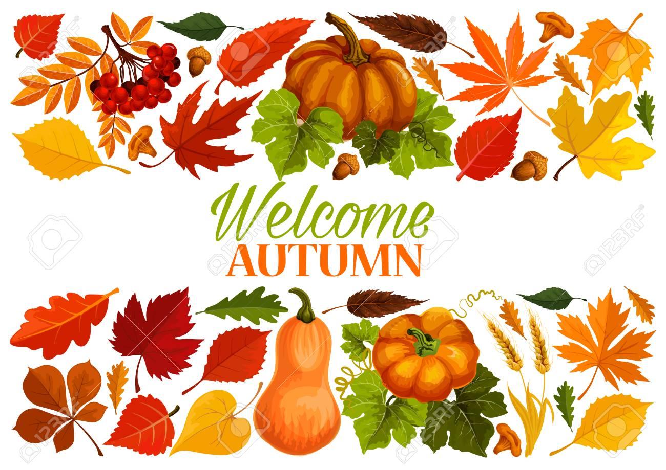 Superbe Bannière D'automne Avec Bordure De Feuille D'automne, Citrouille #DJ_39