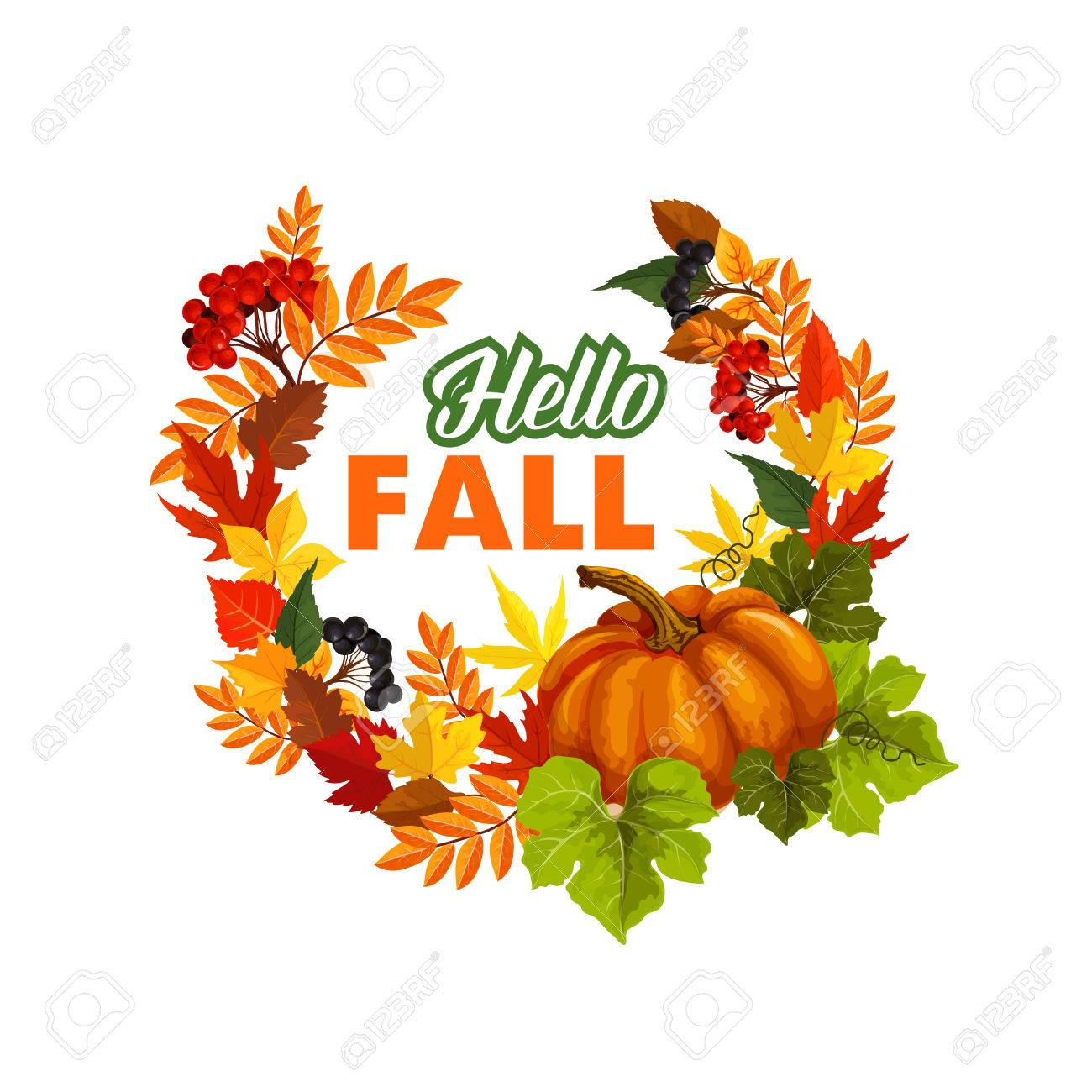 Superior Autumn Seasonal Greeting Card Of Hello Fall Quote And Pumpkin Or Rowan  Berry Harvest On Foliage