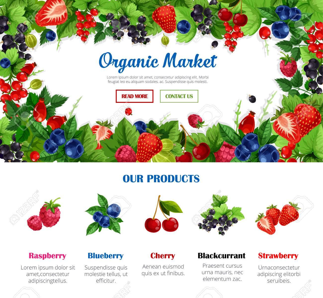 Obst Und Beeren Rahmen Für Bio-Lebensmittel Markt Poster Vorlage ...