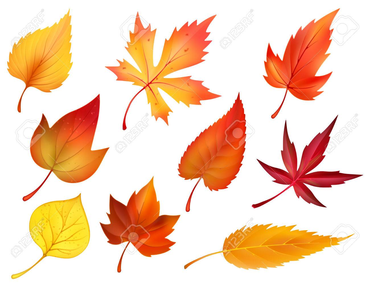 autumn foliage of fall falling leaves vector icons royalty free