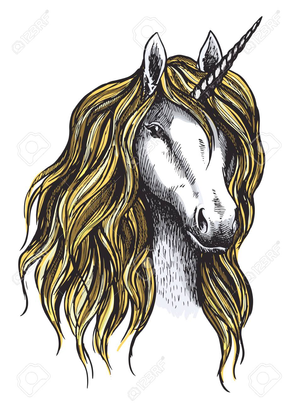 Unicorn Horse Mystic Magic Animal Vector Sketch Royalty Free Cliparts Vectors And Stock Illustration Image 90587471