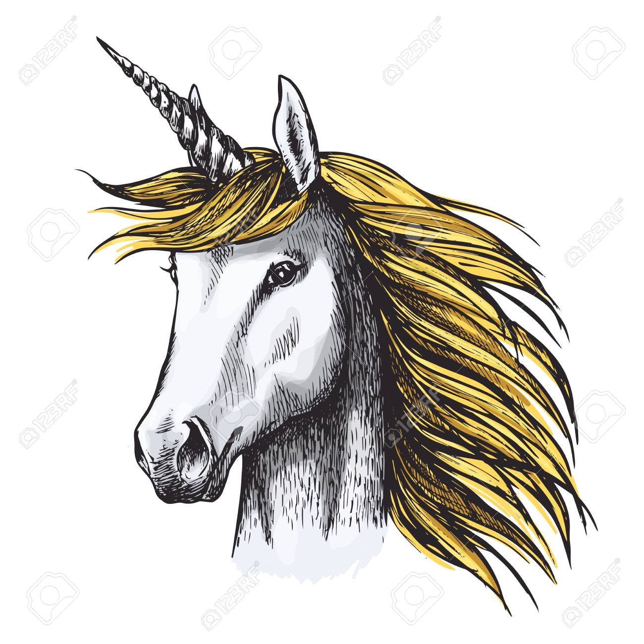 Unicorn With Golden Mane Sketch Of Magic Horse With Spiraling Royalty Free Cliparts Vectors And Stock Illustration Image 99639364