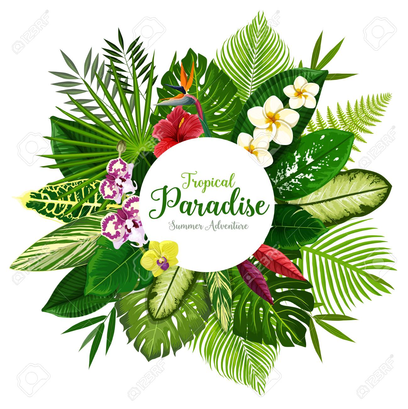 Summer holidays banner of tropical palm leaf and hawaiian flower. Exotic floral bouquet of hibiscus, plumeria, orchid and strelitzia flower, fern, monstera, fan and areca palm for invitation design - 121823299