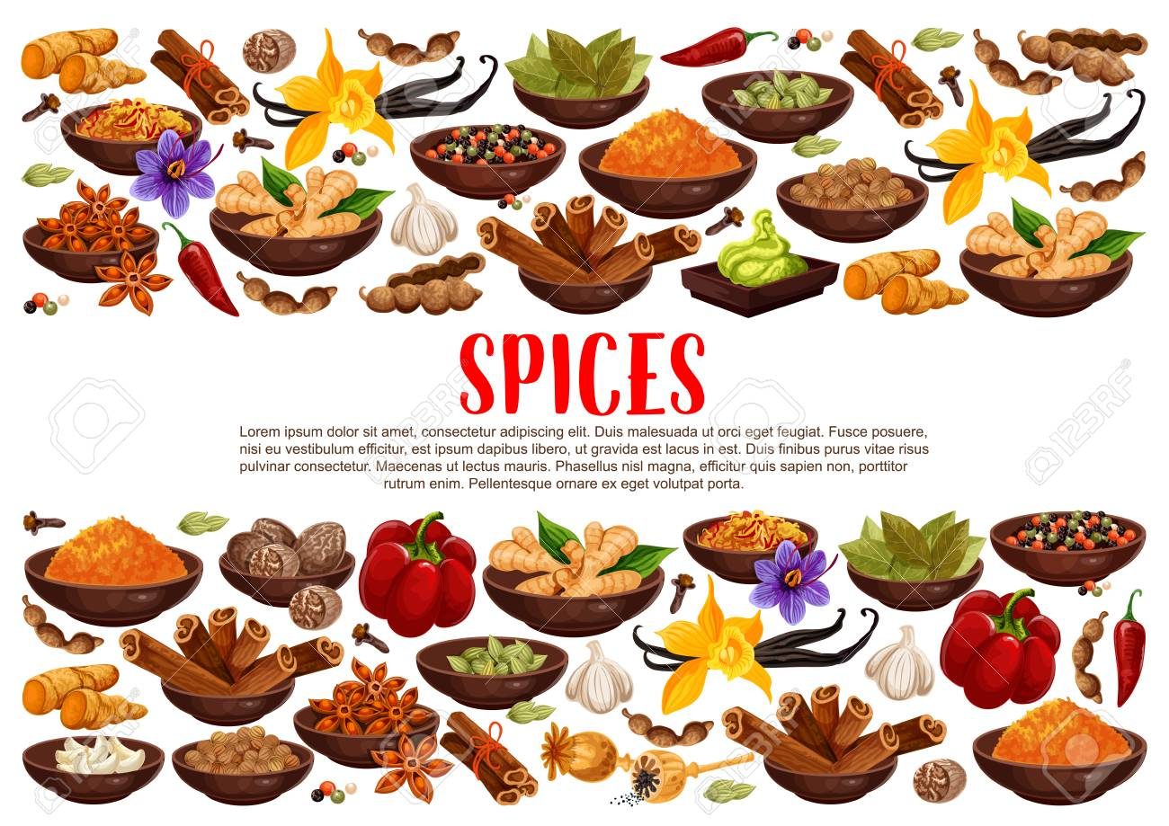 Fragrant spices and condiments from India. Ginger and cinnamon, bay leaves and vanilla, anise star and hot chilli pepper. Piquant curry and nut meg, garlic and saffron, wasabi sauce vector - 114937148