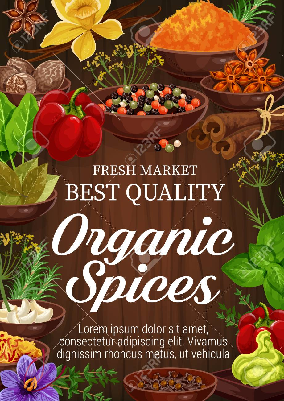 Organic spices and herbs on wooden background. Pepper, rosemary and thyme, green basil, vanilla and cinnamon, nutmeg, garlic and star anise, bay leaf, saffron and turmeric. Seasoning elements - 108230647