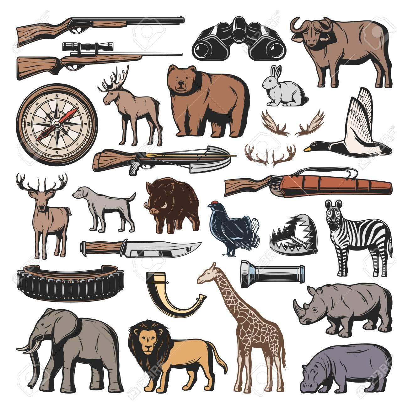 Hunting sport ammunition, vector wild animals and birds  Gun