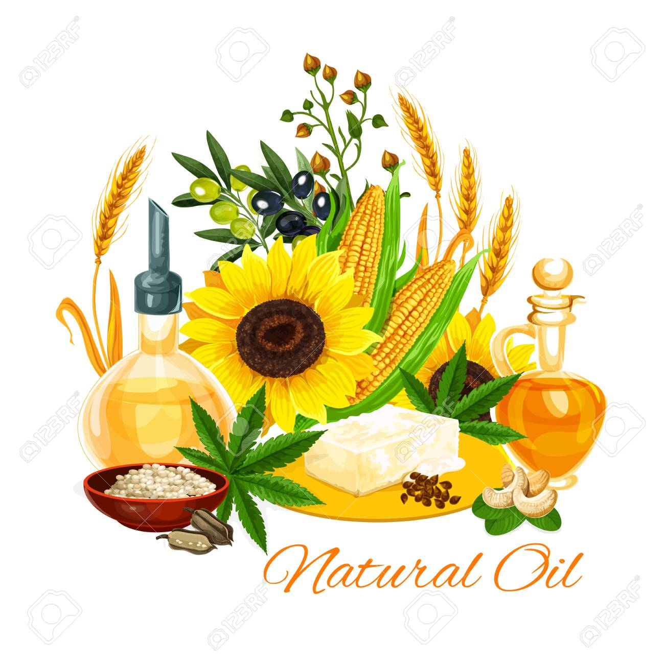 Natural oil and butter variety poster  Sunflower seeds, olive