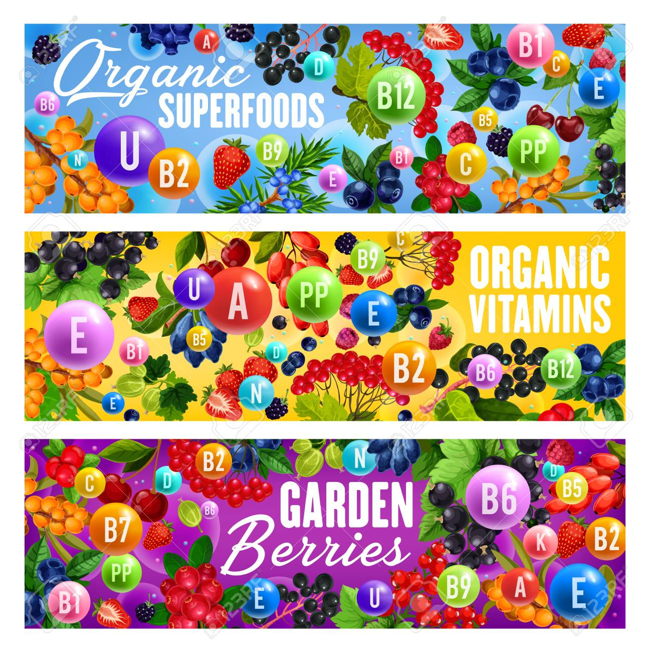 Berries full of vitamins, organic superfood. Vector and cranberry, strawberry and cherry and goji, currant and raspberry. Vegetarian and vegan food, dietary nutrition veggies - 118523370